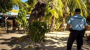 Un gendarme en Martinique en 2014 (NICOLAS DERNE / AFP)