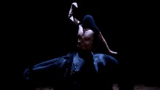 """""""La voie de l'écuyer"""", le dernier spectacle en date de Bartabas. Un ballet pour écuyers et chevaux  (France3 / Culturebox)"""