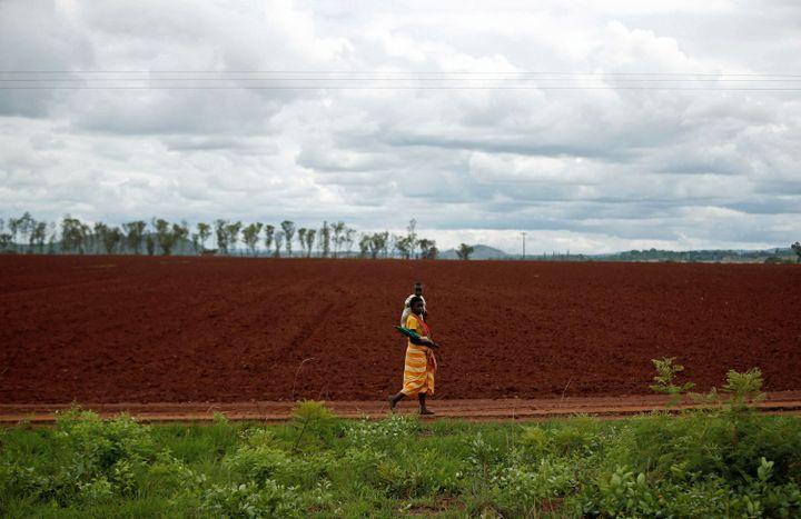 Dans la campagne près de Harare, capitale du Zimbabwe... (REUTERS/Siphiwe Sibeko)