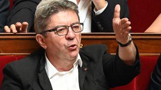 Le député La France insoumise des Bouches-du-Rhône, Jean-Luc Mélenchon, s'exprime le 25 juin 2019 à l'Assemblée nationale, à Paris. (DOMINIQUE FAGET / AFP)