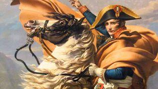 Jean-Marie Rouart et la destinée de Napoléon  (DR)