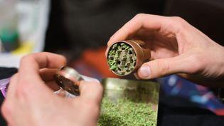Une personneest en possession decannabis, le 20 février 2021 à Paris. (HERMANN CLICK / HANS LUCAS / AFP)