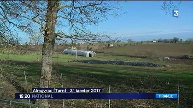 Grippe aviaire : une enquête ouverte dans le sud-ouest