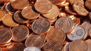 Chaque pièce d'1 centime, en acier cuivré, pèse 2,30 grammes. (EBERHARD GRAMES / BILDERBERG / AFP)