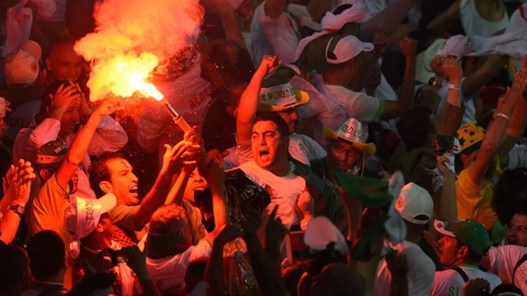 La joie des supporters algériens (PEDRO UGARTE / AFP)