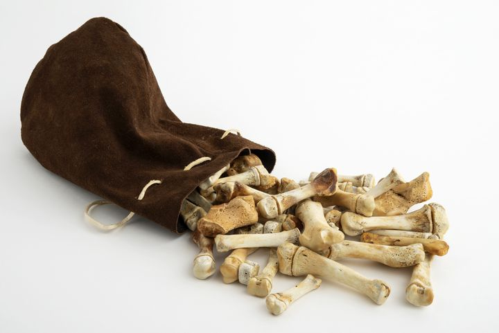 Casse-tête, Canada, Nunavik, population inuit, 20e siècle / Os et peau de phoque (OLIVIER GARCIN)