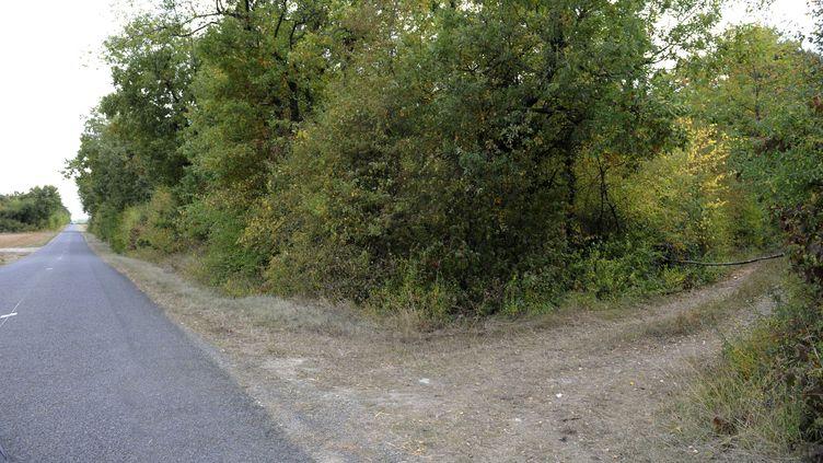 Les abords du lieu où Marie-Christine Hodeau a été enlevée le 28 septembre 2009 alors qu'elle faisait un jogging dans le bois de la Garenne (Essonne). (JDD / SIPA)