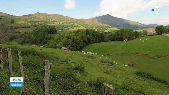 Pays basque : la renaissance de la vallée des Aldudes
