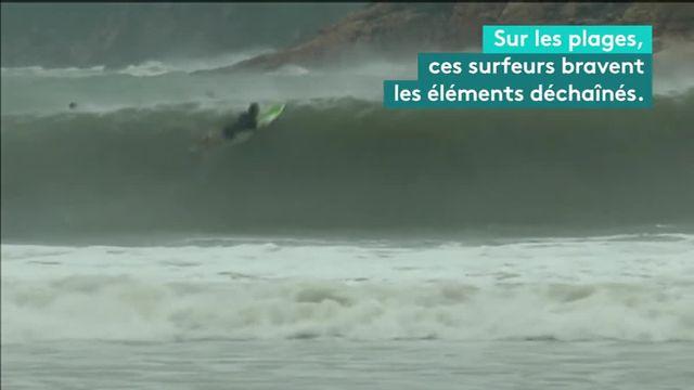 Ces surfeurs défient un typhon