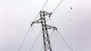 Le réseau électrique est soumis à rude épreuve pendant les vagues de froid. (JULIO PELAEZ / MAXPPP)