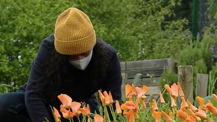 Jardins partagés : un échange fructueux pour les passionnés du potager (France 2)