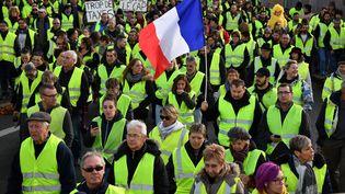 """Des """"gilets jaunes"""" manifestent contre l'augmentation des taxes sur le carburant, le 24 novembre 2018 à Rochefort (Charente-Maritime). (XAVIER LEOTY / AFP)"""