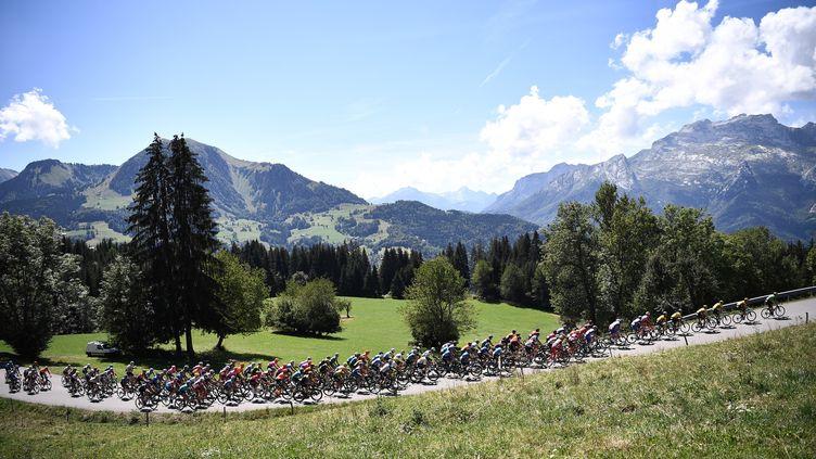 Les coureurs du Critérium du Dauphiné lors de l'étape entre Ugine (Savoie) et Megève (Haute-Savoie), le 15 août 2020. (ANNE-CHRISTINE POUJOULAT / AFP)