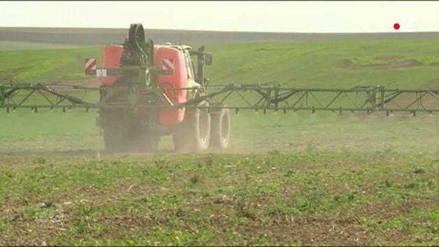 Glyphosate : un herbicide en questions