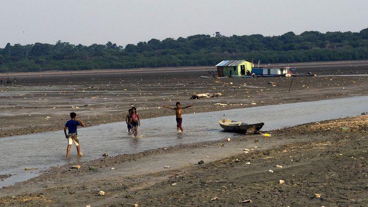 Des enfants jouent dans l'eau à Manaus (Brésil), région touchée par la sécheresse, le 23 octobre 2015. (RAPHAEL ALVES / AFP)