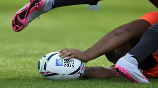 Le Mondial de rugby se dérouleen Angleterre du 18 septembre au 31 octobre. (FRANCK FIFE / AFP)