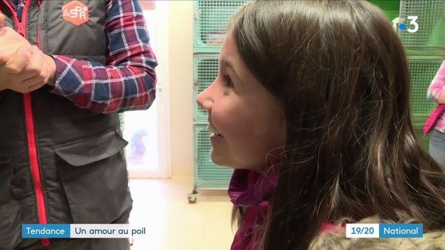 SPA : la Saint Valentin des animaux