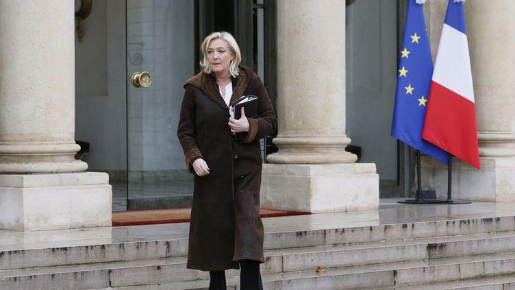 Marine Le Pen, le9 janvier 2015,àl'issue d'une rencontre à l'Elysée avec le chef de l'Etat. (PATRICK KOVARIK / AFP)