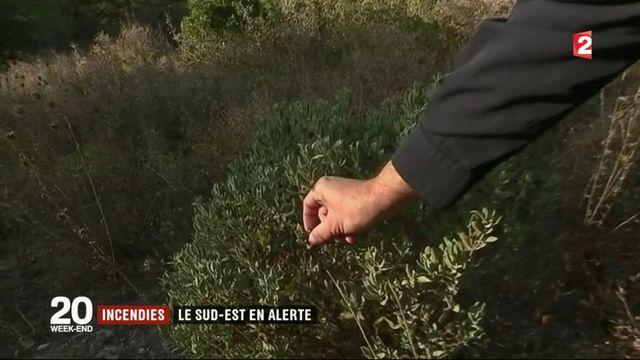 Incendies : week-end à risque dans le sud-est de la France