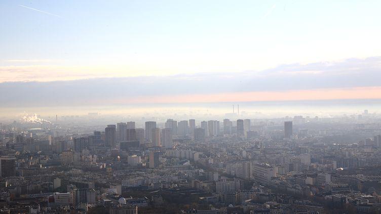 Vue de Paris et de son nuage de pollution, en mars 2012. (ERIC GUILLORET / BIOSPHOTO / AFP)