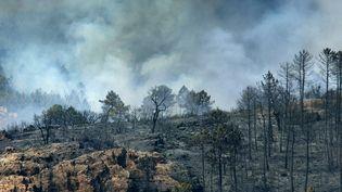 Après la vague d'émotion soulevéepar les incendies qui ont ravagé des sites emblématiques du Var, le Conservatoire du littoral, propriétaire de ces sites, lance un appel à la générosité afin de procéder à leur restauration. Image d'illustration. (JEAN-PHILIPPE KSIAZEK / AFP)
