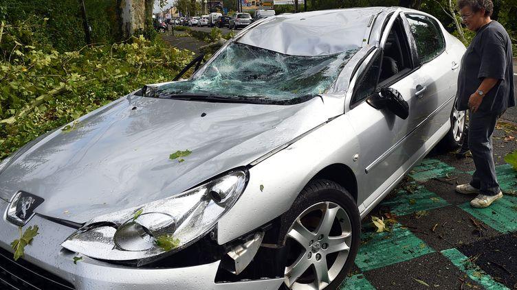Un habitant de Montech (Tarn-et-Garonne)découvre sa voiture écrasée par un arbre, le 1er septembre 2015. (MAXPPP)