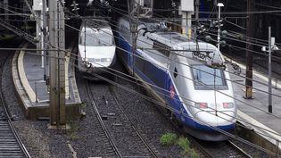 Le trafic des TGV, ici à Montpellier, s'annonce un peu moins perturbé vendredi 13 avril pour le début du troisième épisode de la grève. (MAXPPP)