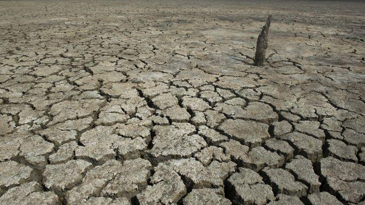 Le lacEl Cisne, en Colombie, lors d'une sécheresse, le 31 juillet 2014. (EITAN ABRAMOVICH / AFP)