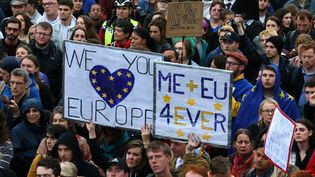 Les manifestants tiennent des pancartes pro-européennes lors d'un rassemblement anti-Brexit à Trafalgar Square, Londres le 28 juin 2016. (JUSTIN TALLIS / AFP)