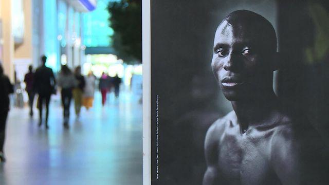 Pau: expo photos Denis Dailleux dans les rayons