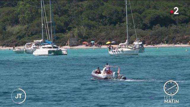 Île de Porquerolles : bientôt une jauge pour limiter l'affluence