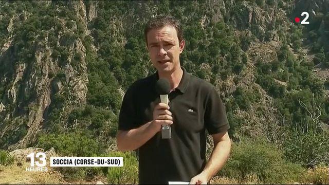 Corse: l'enquête sur le drame qui a fait cinq victimes commence