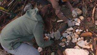 Des équipes de bénévoles se relaient pour venir en aide aux sinistrés de la Vallée de la Roya (France 3)