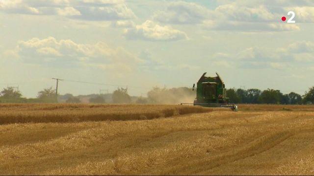 Agriculture : l'écologie au coeur de la Politique Agricole Commune