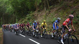Julian Alaphilippe (maillot jaune) et le peloton du Tour de France, lors de la 6e étape entre Mulhouse et La Planche des Belles Filles, le 11 juillet 2019. (ANNE-CHRISTINE POUJOULAT / AFP)