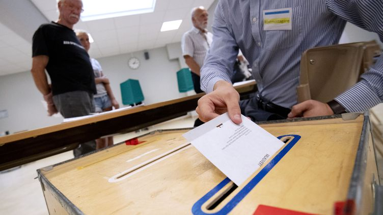 Les Suédois votent dimanche 9 septembre pour les élections législatives. (JOHAN NILSSON / TT NEWS AGENCY)