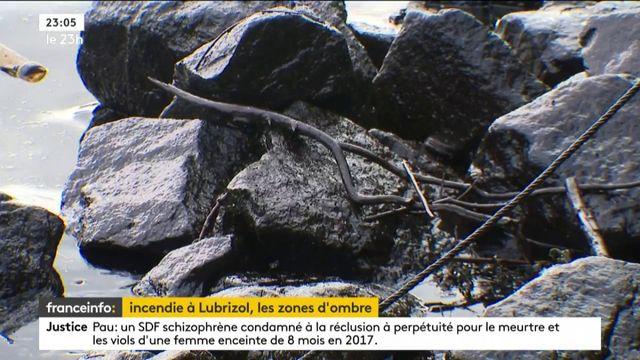 Incendie d'un site Seveso à Rouen : la population angoisse pour sa santé