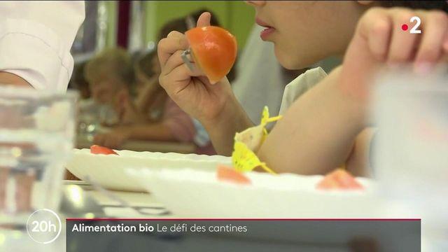 Agriculture bio : des produits biologiques dans les menus, le défi des cantines