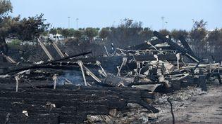 Le parc écologique Izadia, au lendemain de l'incendie qui a ravagé165 hectares à Anglet (Pyrénées-Atlantiques), le 31 juillet 2020. (GAIZKA IROZ / AFP)