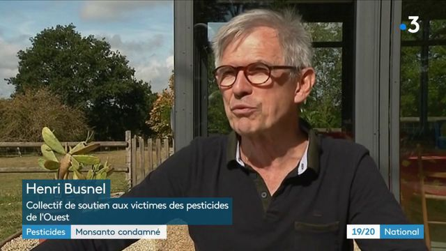 Pesticides : Monsanto condamné aux États-Unis