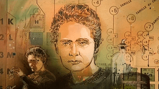 Marie Curie vue par C215.  (C215 / France 3 Ile-de-France)