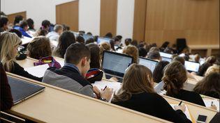 En France, des dizaines d'étudiants ont été recalés à l'entrée en master et n'ont toujours pas deplace dans une formation. Photo d'illustration. (LUC NOBOUT / MAXPPP)