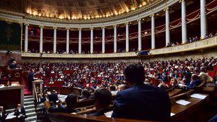 Les députés vont examiner à partir de lundi le projet de loi d'habilitation qui permettrait au gouvernement de légiférer par ordonnances dans le cadre de la réforme du Code du travail. (CHRISTOPHE ARCHAMBAULT / AFP)