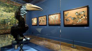 """Une des salles de l'exposition """"Les Animaux du Roi"""" au château de Versailles, à voir du 12 octobre 2021 au 22 février 2022. (DIDIER SAULNIER - CHATEAU DE VERSAILLES)"""