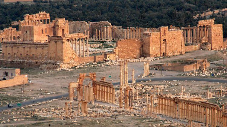 La ville antique de Palmyre, dans le désert syrien, le 13 octobre 2009. (MAXPPP)