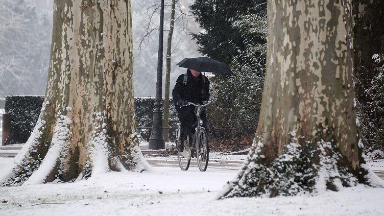 A Strasbourg (Bas-Rhin), le 15 janvier 2013. A partir du 16 janvier au soir, c'est l'ouest du pays qui sera touché. (FREDERICK FLORIN / AFP)