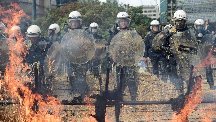 Les forces de police en face de feux déclenchés par des agriculteurs qui leur ont lancé des oeufs et des bottes de paille, le lundi 7 septembre 2015 à Bruxelles. (EMMANUEL DUNAND / AFP)