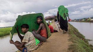 Des réfugiés Rohingyas se protègent de la pluie, en Birmanie, le 17 octobre 2017. (STRINGER / ANADOLU AGENCY / AFP)