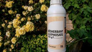Un bidon de désherbant contenant du glyphosate, àGodewaersvelde (Nord), le 17 juin 2015. (PHILIPPE HUGUEN / AFP)