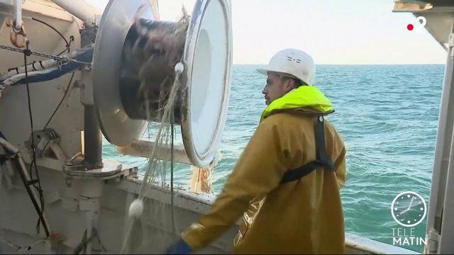 Brexit : des zones de pêche désormais fermées aux navires français